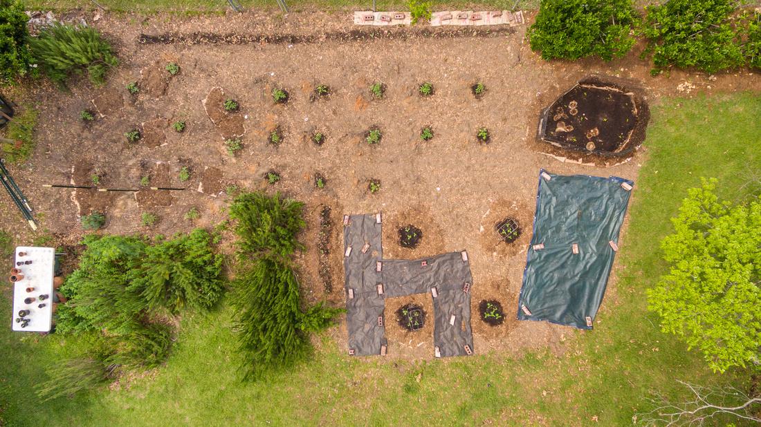 Third garden photo - drone